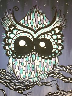 "close-up of ""Night Owl"""