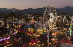 Whether you're going for the rides, animals, food or even the art, the LA County Fair can be a beast to navigate. Thankfully, we've got you covered.