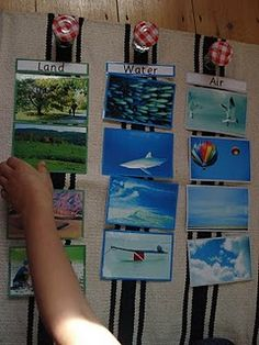 This would be a great activity for classifying animals according to where they live- land, water, or air. We could organize different pictures of animals as a class. Montessori Activities, Science Activities, Science Projects, Activities For Kids, Science Centers, Science Stations, Science Labs, Geography Activities, Kid Science