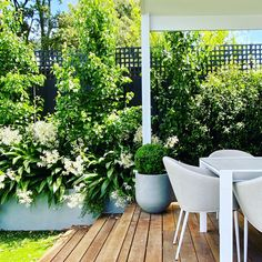 Outdoor Furniture Design, Terrace Garden, Architect Design, Outdoor Dining, Portfolio Design, Landscape Design, Home And Garden, Architecture, Plants