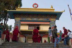 Shechen Monastery, Kathmandu - by weiinqueensland:Flickr