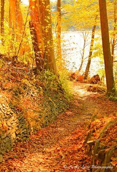 autumn, Gillette's Castle State Park, Connecticut | Cathy Leite  -  the path up to the castle