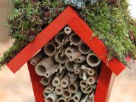 Craft a green-roofed home for insects in your yard by combining a birdhouse, bamboo and sticks.