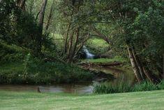 Camping & Picinic - Brookwood Estate Trout Farm