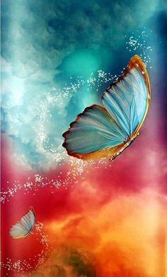 Blue Butterfly Wallpaper, Butterfly Painting, Butterfly Art, Rainbow Butterfly, Scenery Wallpaper, Wallpaper Backgrounds, Butterfly Pictures, Beautiful Nature Wallpaper, Beautiful Butterflies