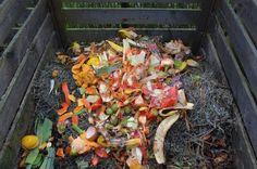 Compost casero 3