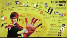Bruce Lee: the dragon is reborn