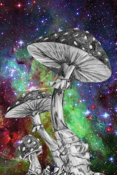 Cosmos On Drugs