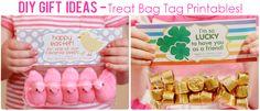 DIY Teacher Appreciation Treat Bag Inspiration Board