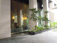 Status: NOT AVAILABLE Location: V. Makati, Outdoor Landscaping, Condominium, Landscape, Plants, Design, Scenery, Plant