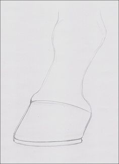 Drawing of Horse Hoof More
