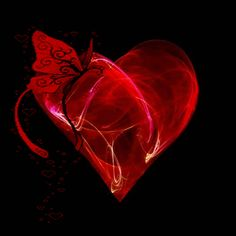 .  ♡ღ♥ღ LOVE  ♡ღ♥ღ