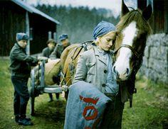 Lupaus Polish Films, Finland, Ww2, Movie Stars, Norway, Sweden, Nostalgia, Movies, Birches
