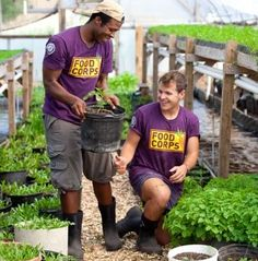 Food Corps.....      TEACH children about food and nutrition      GROW healthy food with kids and communities in school gardens      CHANGE what's for lunch by connecting farms and schools