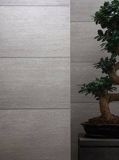 The beauty of nature is reflected in the pattern of the relief-embossed vinyl wallcovering ROCCIA by SAHCO, which was inspired by the texture and look of natural stones.