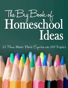 Over 100 Homeschool Ideas including preschool, geography, math, and more! #affiliate