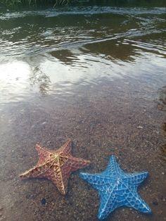 Escultura Estrelas-do-Mar Você sabia que elas representam regeneração?
