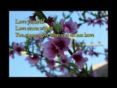 Four Simple Ways To A Happier You Simple Way, The Creator, Love You, Happy, Plants, Te Amo, Je T'aime, Ser Feliz, I Love You