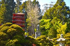 Japanese Tea Garden Golden Gate Park, Japanese, Tea, House Styles, Garden, Home Decor, Decoration Home, Japanese Language, Room Decor