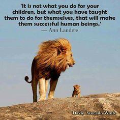 Teach them right