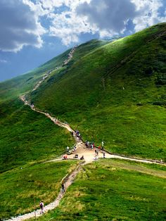 """Tarnica"" - photo by Elendess, via deviantART;  in the Bieszczady Mountains, Poland;  Mount Tarnica is 4,416 feet high     ...possibly Siodlo Pass (4,183 feet) near Mount Tarnica..."