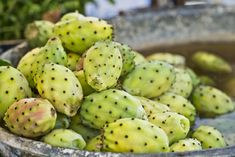 Malta pear