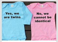 I have to write a persuasive paper about being a fraternal twin?