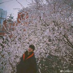 Zhao Li Ying, Kim Jin, Singer, Actors, Couple Photos, Posters, Couple Shots, Singers, Couple Photography