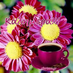 Καλημέρα Με Λόγια Απλές Κινούμενες Εικόνες - Giortazo.gr Night Pictures, Good Morning, Tableware, Plants, Buen Dia, Dinnerware, Bonjour, Tablewares, Plant