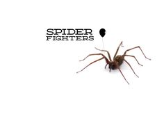 SPIDER FIGHTERS