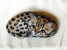 TIGRILLO by rockpainting , yvette, via Flickr