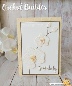 stampin up blog orchideen climbing orchid orchideenzweig orchid builder stempeltier blumen