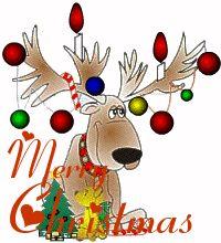 Best Sacramento Christmas Lights list so check it out and enjoy http://www.sacramentorealestatevoice.com/christmas-holiday-lights-around-sacramento/