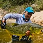 Dorado fishing in the South of Bolivia
