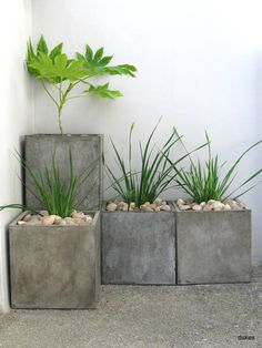 Think these are concrete planters but they could be treated metal. Love the look, especially if the scale is large.