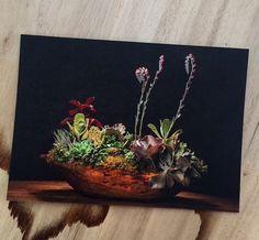 #Fullcolor #CMYK #postcard