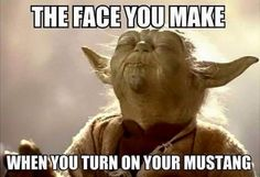 Looking to Buy Weed Online in Canada? Find thousands of marijuana strains, cannabis products including CBD, edibles, seeds and concentrates. Yoda Quotes, Funny Quotes, Funny Memes, Qoutes, Asshole Quotes, Witty Quotes, Daily Quotes, Yoda Meme, Star Wars Meme