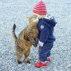#Cutestoftheday!! #love #PETA #Kittycat #littleboy. #CUTE  #BESTOFTHEDAY  #BEAUTIFUL #AMAZING !! ♡