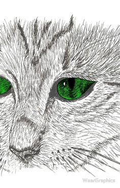 Cat muzzle green eyes