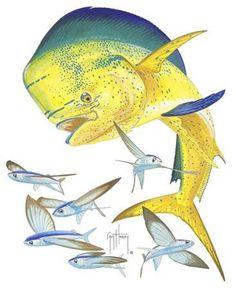 19 Best Tats Images Fish Tattoos Gone Fishing Fish Art