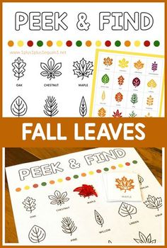 Free Peek and Find Fall leaves Spring Theme, Autumn Theme, Learning Apps, Early Learning, Lesson Planner, Tot School, Fall Crafts, Holiday Crafts, Fun Activities