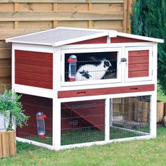 Trixie Natura Painted Rabbit Hutch with Outdoor Run. Petco