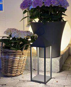 8177-Nowodvorski-Picnic-LED-Lanterne-Grafitt_trinemaris_m Planter Pots, Design, Lily