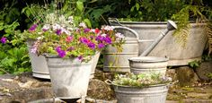 Sete passos para cultivar um jardim incrível em casa