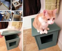 Useful DIY Solutions For Hiding The Litter Box Hidden kitty litter box! Great for organizing small places. Now what about the smell. Great for organizing small places. Now what about the smell. Hidden Litter Boxes, Diy Litter Box Cover, Cat Litter Box Diy, Cat Litter Box Enclosure, Liter Box, Cat Liter, Cat Hacks, Diy Tumblr, Cat Room