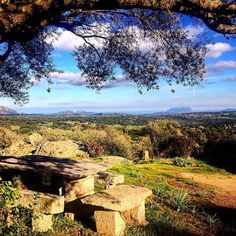 by http://ift.tt/1OJSkeg - Sardegna turismo by italylandscape.com #traveloffers #holiday | The corner of my hearth. #ourhome#whereisyoursoul#love#peaceful#sunny#winter#day#landscape#nature#countryside#gallura#sardegna#sardinia#sardiniaexp#sardiniamylove#lanuovasardegna#igersardegna#instasardegna#instagood#instamood#nofilter#alwayswithme Foto presente anche su http://ift.tt/1tOf9XD | January 28 2016 at 03:28PM (ph frangipane7 ) | #traveloffers #holiday | INSERISCI ANCHE TU offerte di turismo…