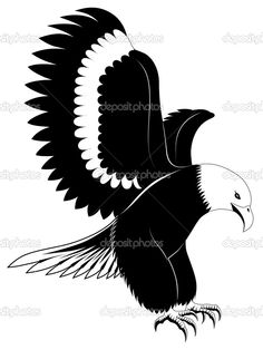 eagle line drawing vector - Google Search