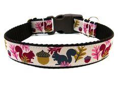 Fall Dog Collar 1 Squirrel Dog Collar by Wagologie on Etsy, $18.00