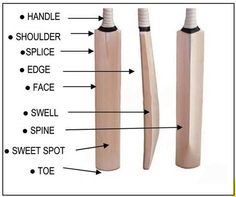Parts of a cricket bat, helpful information for the cricket chapters of the Psmith books. Cricket Time, Cricket Books, Cricket Logo, Cricket Quotes, Cricket Bat, Cricket Sport, Cricket World Cup, Cricket Outfits, Bowling Ball