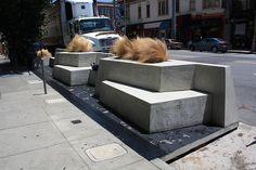 2410 California Street Parklet (Siol Design, Zinc Details, Pizzeria Delfina)